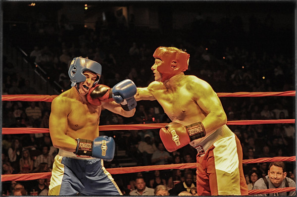 The Fights-2012